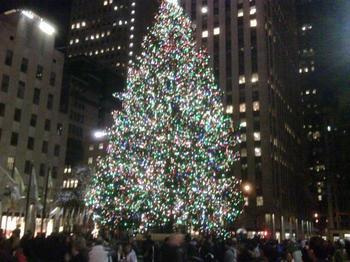 NY Tree.jpg